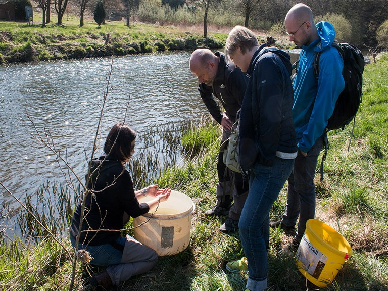 "Fachseminar ""Gewässerökologie für Naturschützer"" an der Nister"