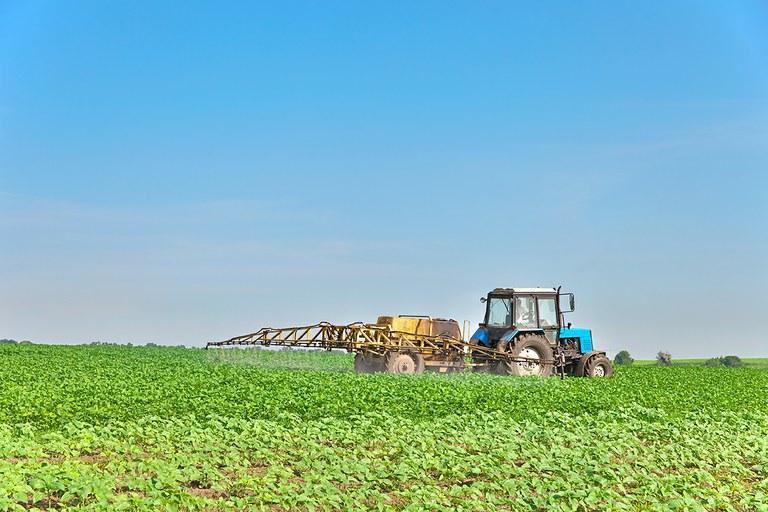 Artensterben: Mitverursacht durch unzureichende Prüfung von Pestiziden?