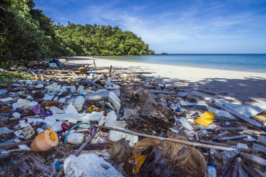 Weiterbildung für Nachhaltigkeit und Umweltschutz