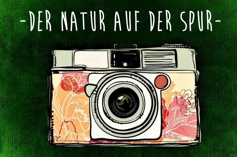 Reallabor Queichland lädt zu Foto-Wettbewerb und Foto-Orientierungslauf ein