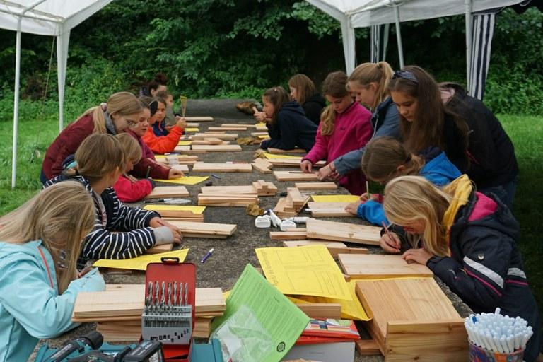 Vielfältiges Sommerferien-Programm mit dem Ada-Lovelace-Projekt