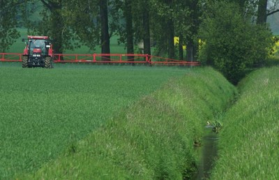 Der Pestizideinsatz in der Landwirtschaft belastet zunehmend Krebstiere und Insekten in Gewässern. Foto: Renja Bereswill