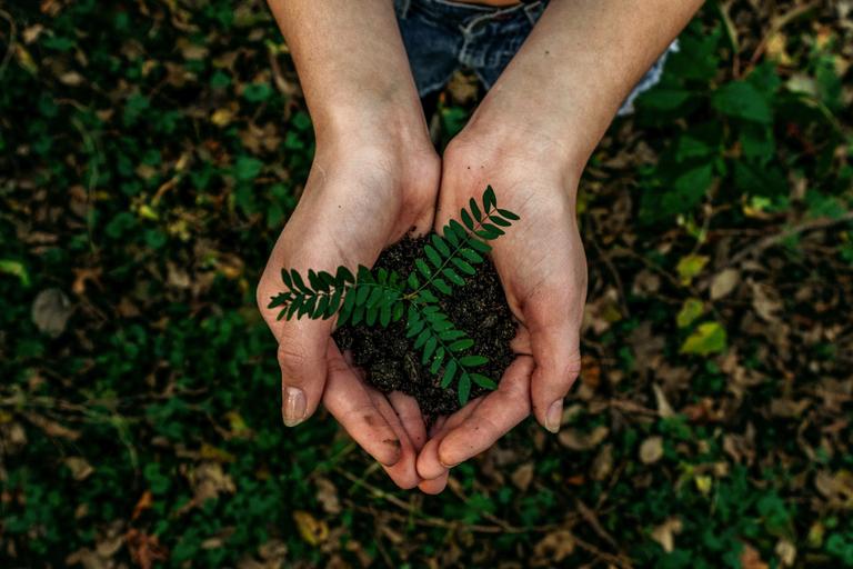 Universität ist Mitglied der neuen Deutschen Gesellschaft für Nachhaltigkeit an Hochschulen