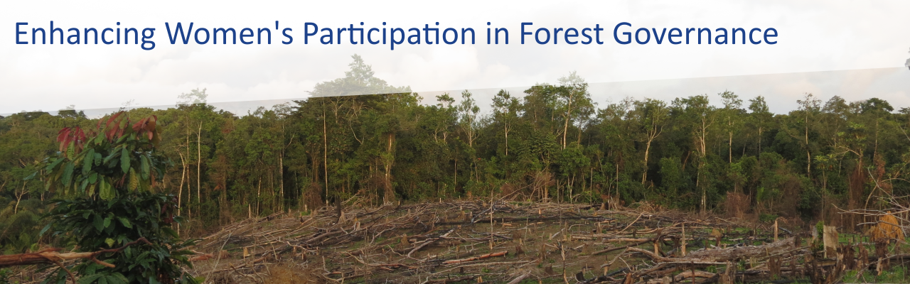 bild-forest-governance