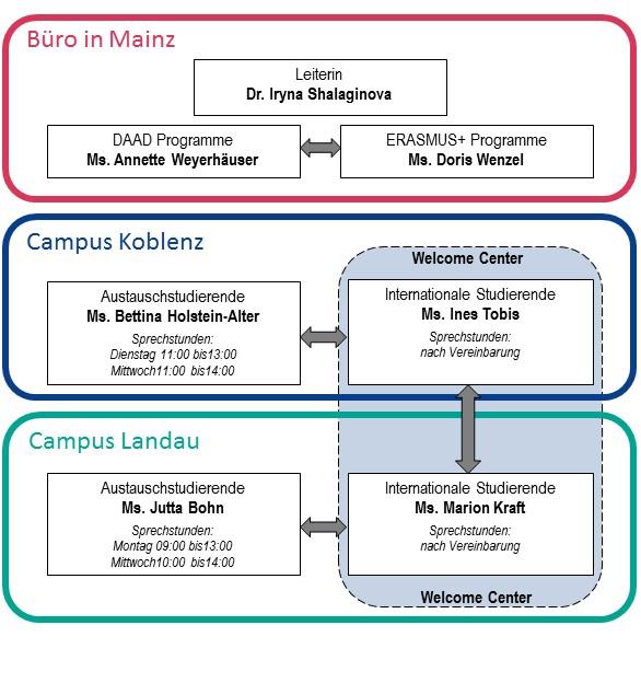 Organigramm DE