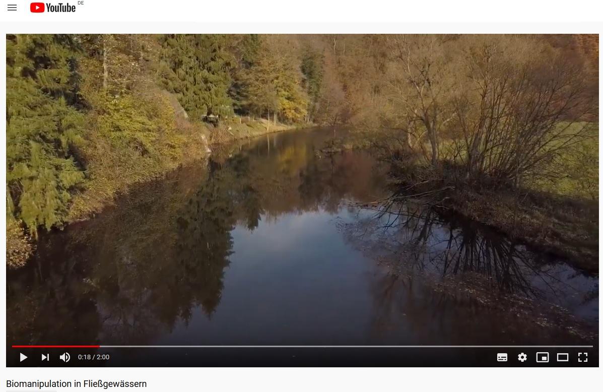 YouTube Video zur Vorstellung des Projekts BIOEFFEKT II anlässlich der Woche der Umwelt 2021.