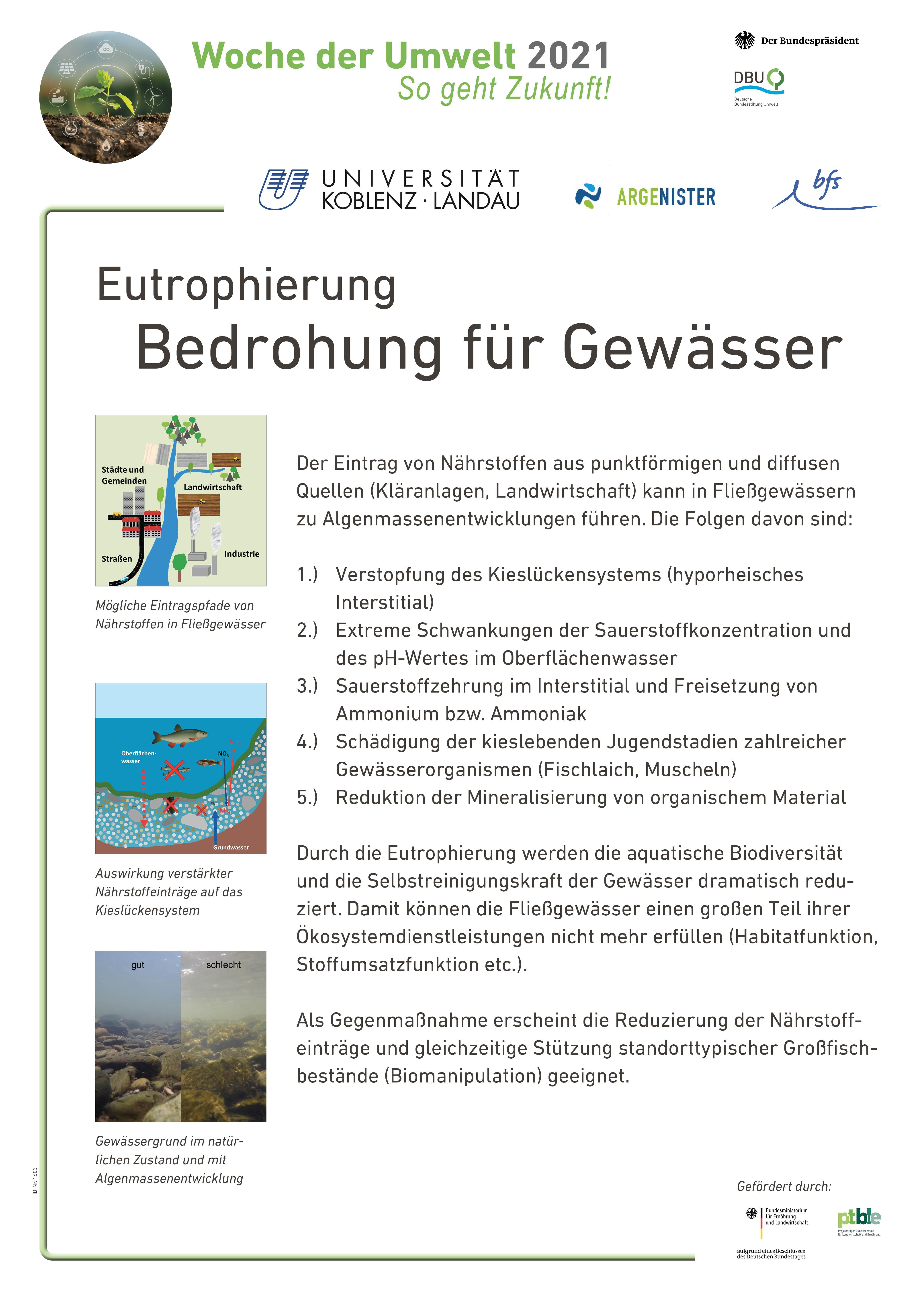 Eutrophierung: Bedrohung für das Gewässer
