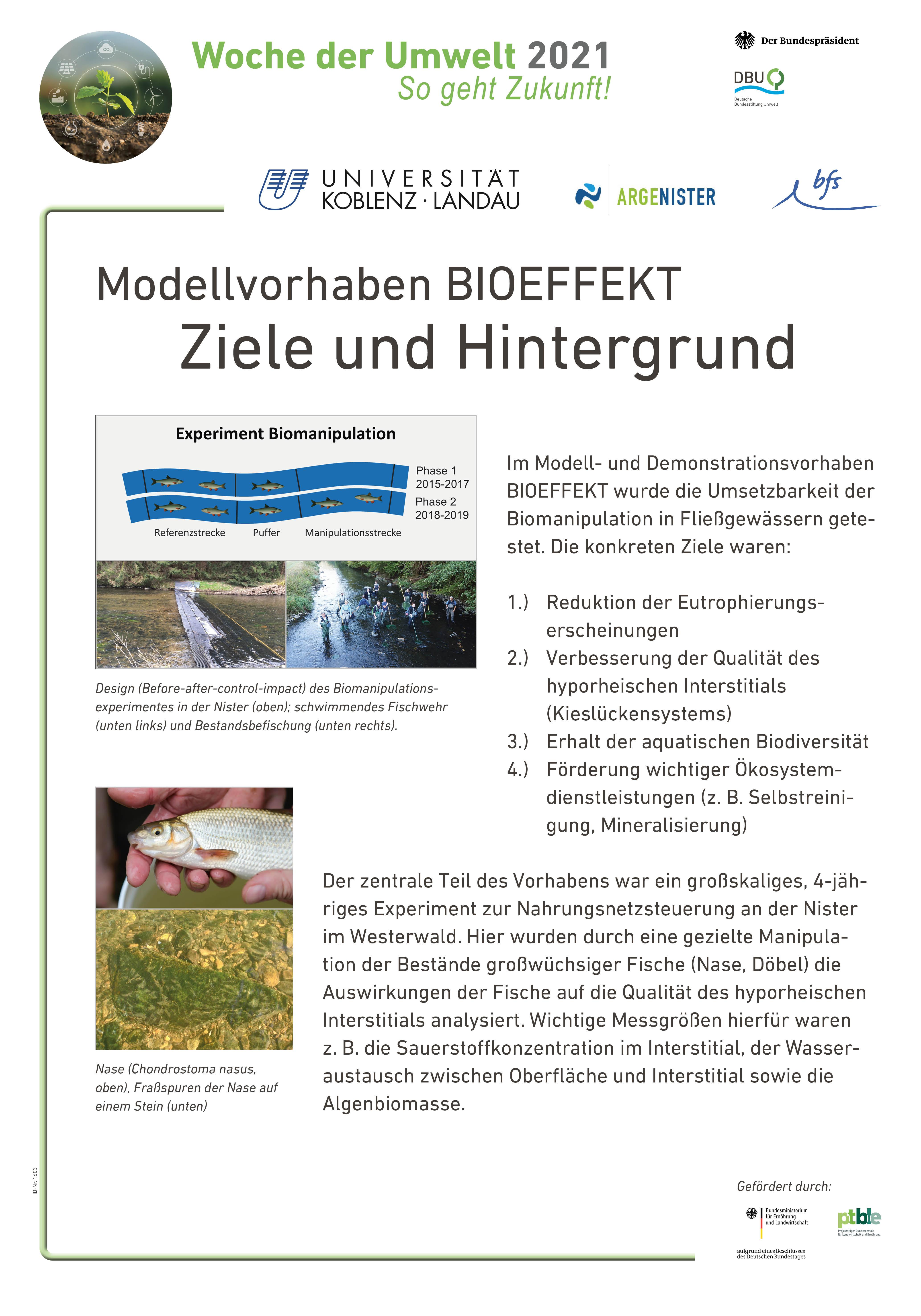 Biomanipulation in Fliessgewässern. Projekt BIOEFFEKT: Hintergrund & Ziele