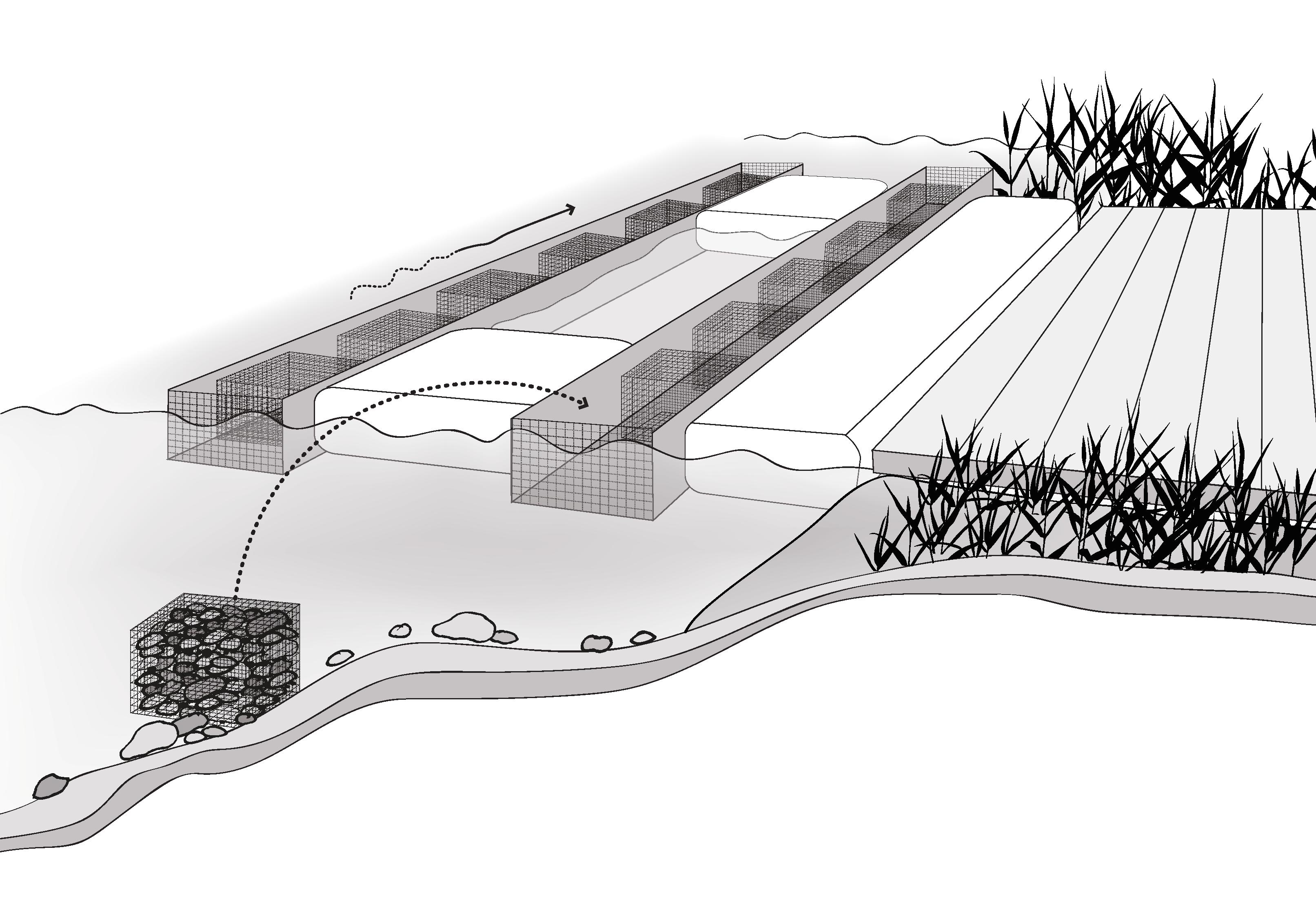 Schema der geplanten Mesokosmosanlage