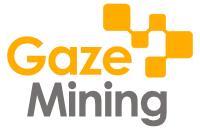Erste Ergebnisse des GazeMining Projektes