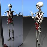 X-Ray-Mirror