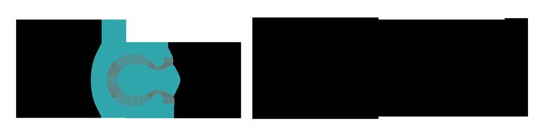 Logo NeuStArt klein