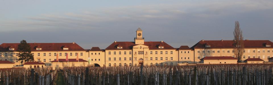 Quartier Hornbach Neustadt/W.