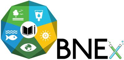 Logo BNEx