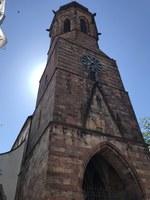 Bild der Stiftskirche in Landau