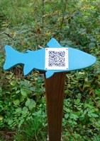 Fischwalk