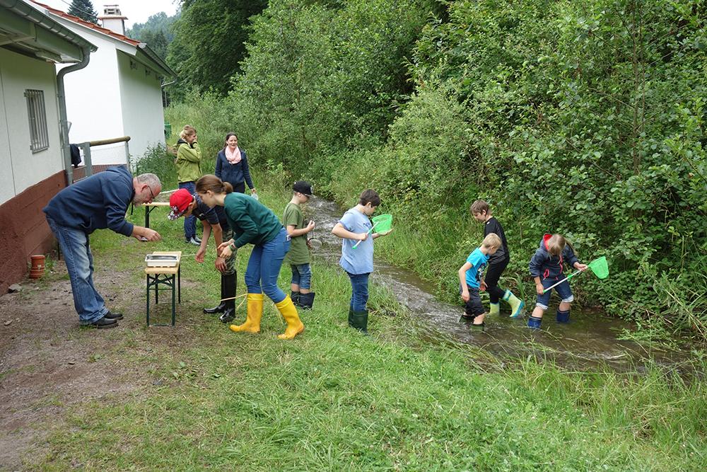 Gewässer-Akademie KIDS