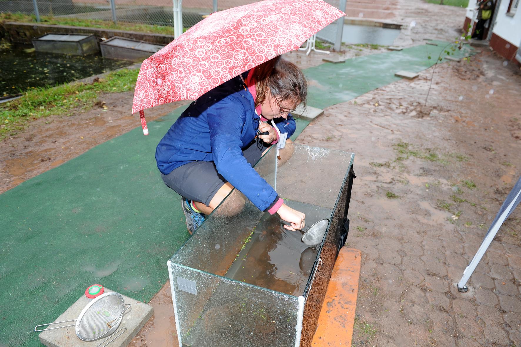 Station Wasserwahrheiten