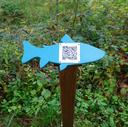 Fisch_homepage