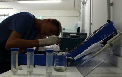 Analyse der Wasserproben mit dem Photometer