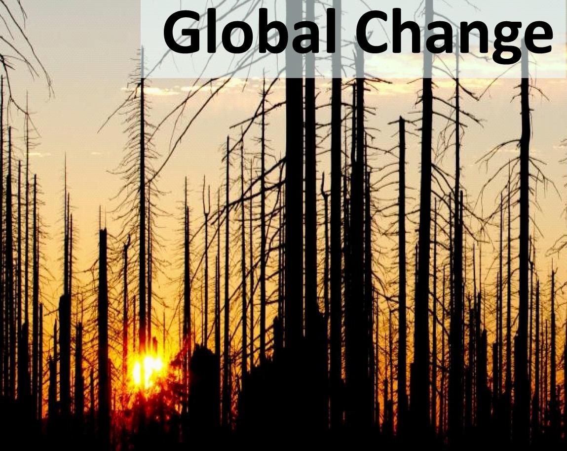 Grafik_Startseite_Global Change.jpg
