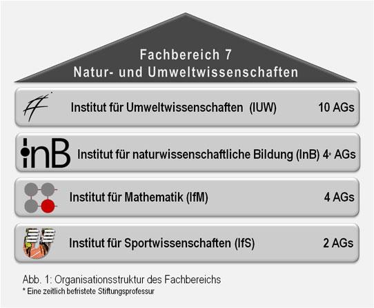 Abb 1: Organisationsstruktur
