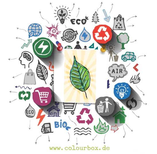 Interdisziplinarität im Studiengang Mensch und Umwelt: Psychologie, Kommunikation und Ökonomie