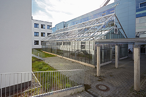 Gewächshaus auf dem Campusgelände Koblenz