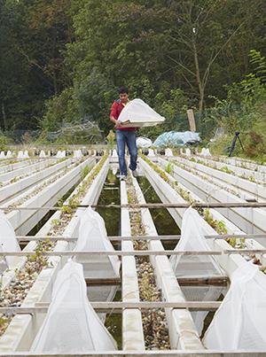 Student auf der Freiland-Fließgewässeranlage Campus Landau