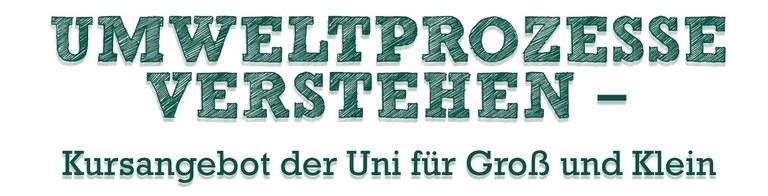 Sommerpause beendet: Kurse im Grünen Klassenzimmer der Landesgartenschau gehen in die zweite Runde