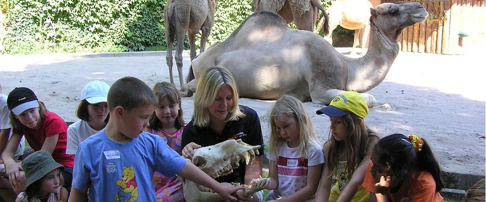 Zooschule Landu