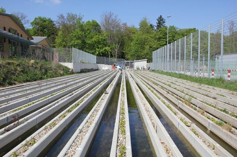 The Landau Stream Mesocosm Facility (photo by M. V. Wieczorek).