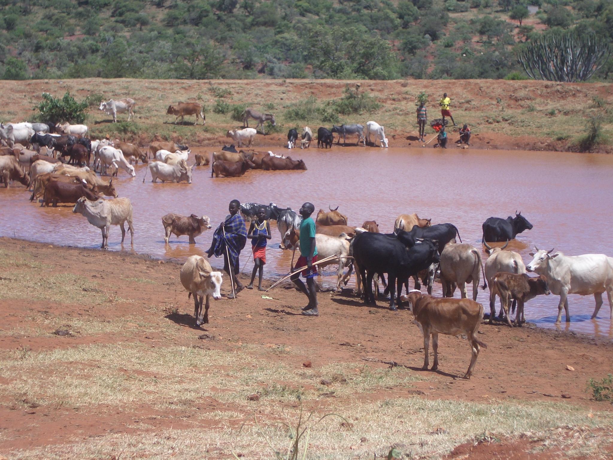 Kenya Waterpoint