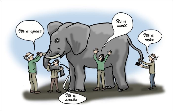 Elefant_Bild