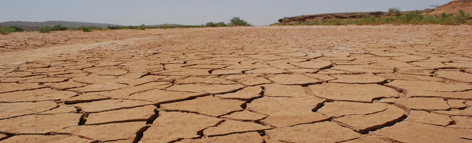 Environmental problem: drought.