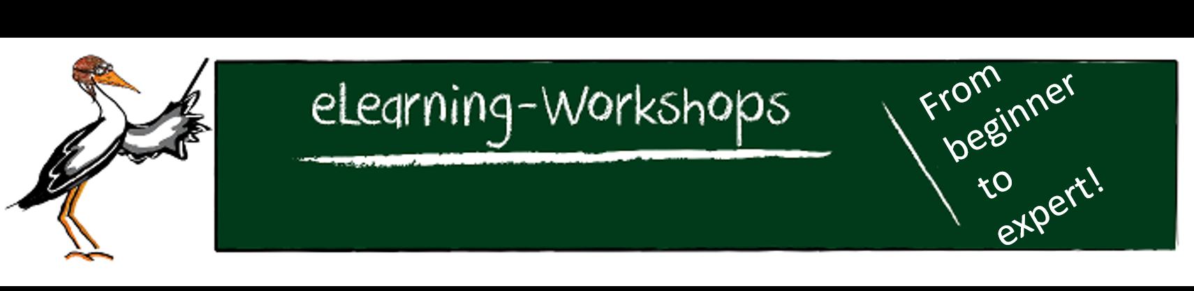 OLAT Workshop Banner englisch