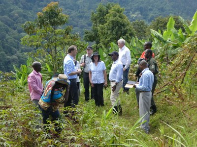 Visit of agroforestry plots