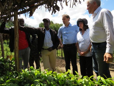 Visit of tree nursery