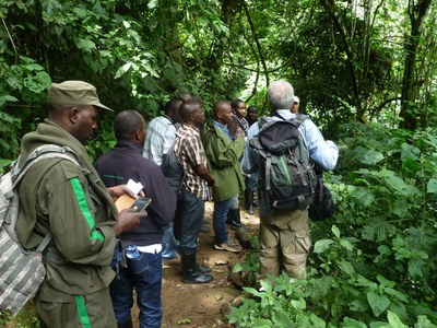 Study tour to Cyamudongo forest