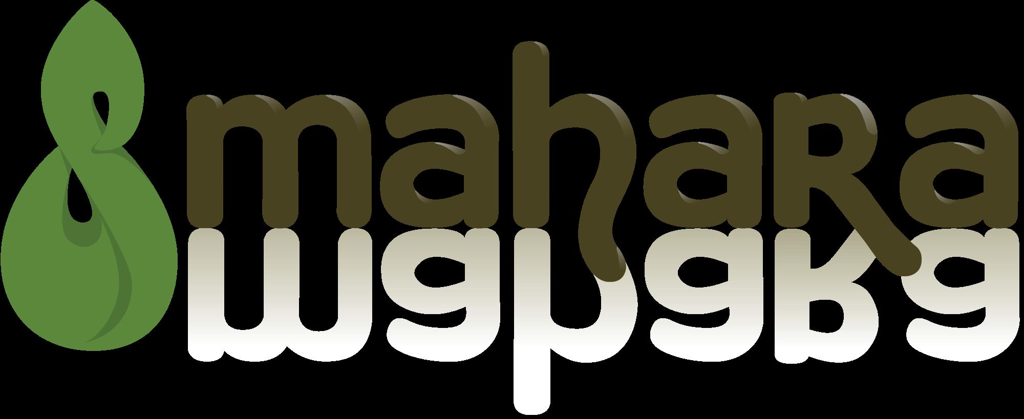 E-Portfolio (Mahara)